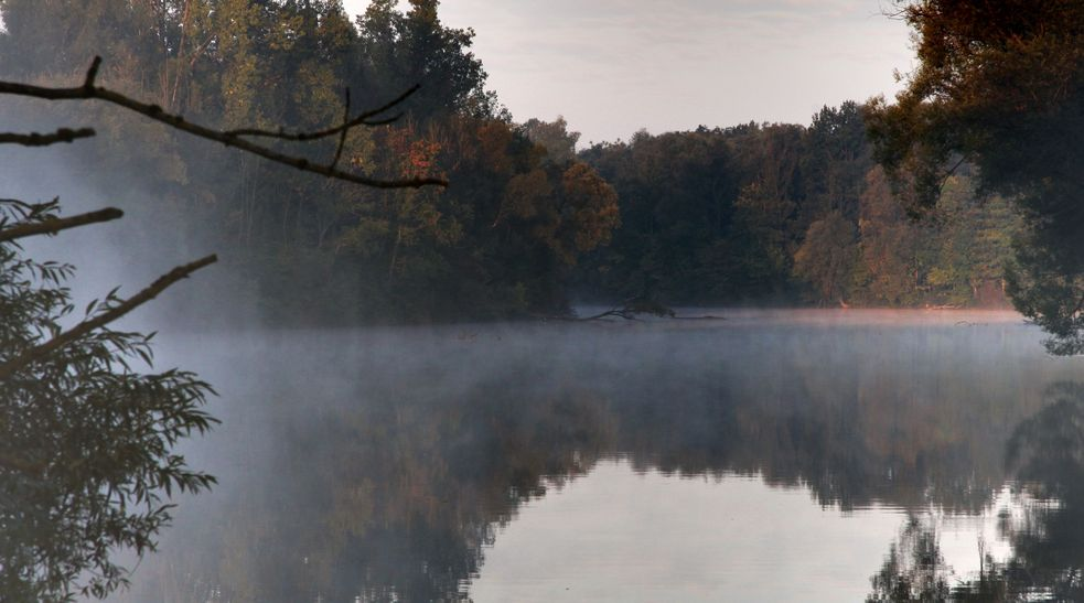 Photo of Amper river in Dachau with early morning fog on the water. Photo: City of Dachau
