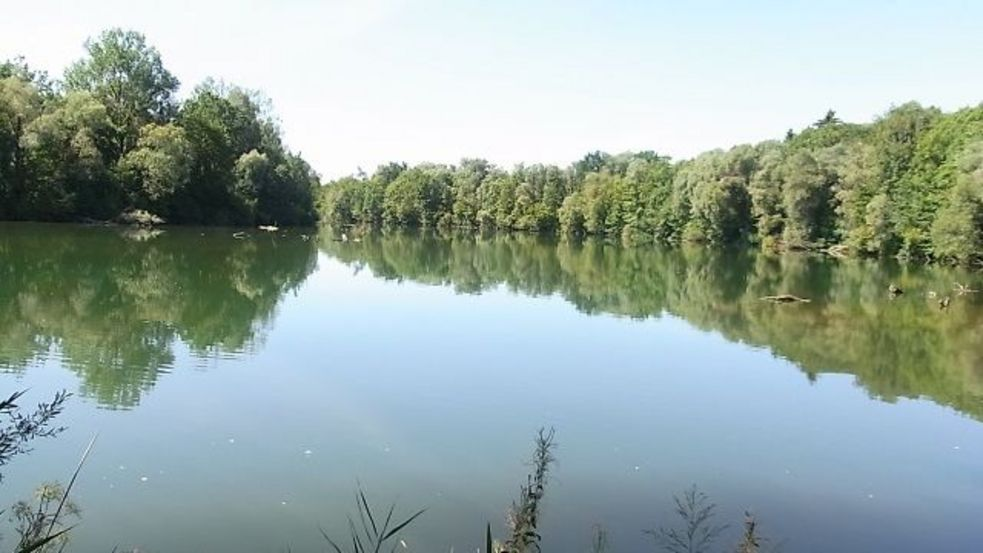 Photo of Amper river in Summer, green trees and bushes lining the river banks. Photo: City of Dachau